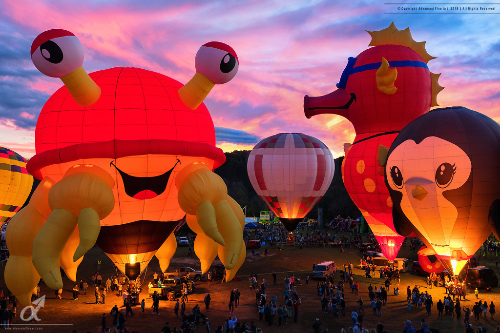 Carolina Balloon Festival
